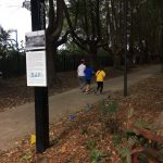 Stanmore Public School Cross Country 2018