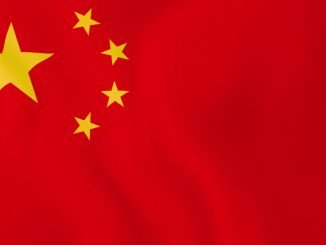 Stanmore Public School Chinese Flag