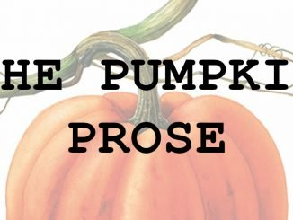Stanmore Public School The Pumpkin Prose