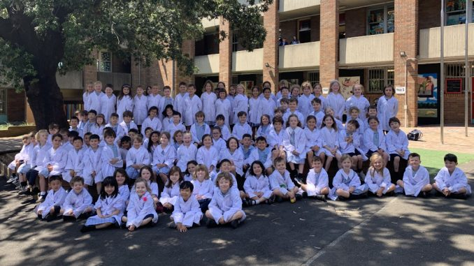 Stanmore Public School Kindergarten STEAM Day 2020
