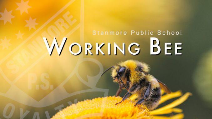 Stanmore Public School Working Bee