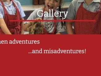 stanmore public school sakg gallery